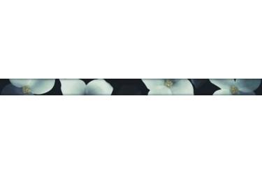 Керамическая плитка Alcor Milan Cenefa Flor S4